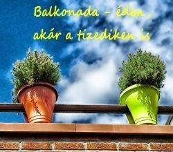 balkonada